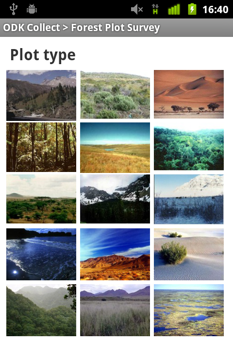 Screenshot of images of various plots as answers